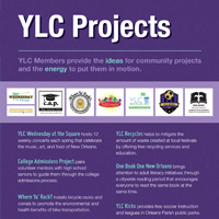 Download YLC's 2013 Annual Report